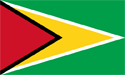 Guyana Flag Medium