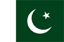 Pakistan Flag Medium