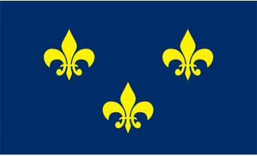 French Fleur De Lis Flag Outdoor Nylon