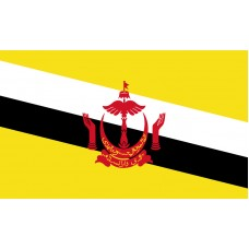 Brunei Flag Outdoor Nylon