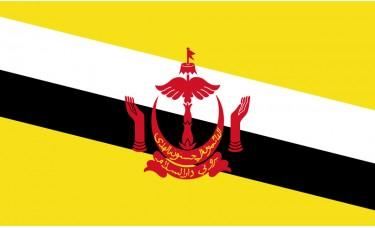 Brunei Flag Outdoor Nylon