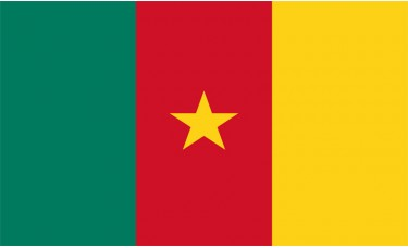 Cameroon Flag Outdoor Nylon