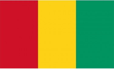Guinea Flag Outdoor Nylon