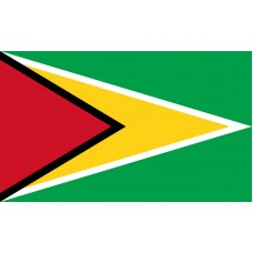 Guyana Flag Outdoor Nylon