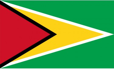 Guyana Flag Outdoor Nylon