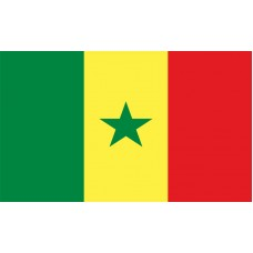 Senegal Flag Outdoor Nylon