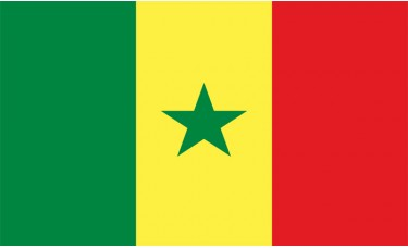 Senegal Flag Outdoor Nylon
