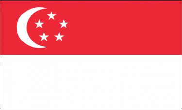Singapore Flag Outdoor Nylon