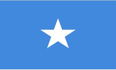 Image result for somalia flag