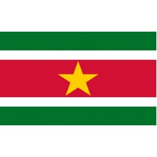 Suriname Flag Outdoor Nylon