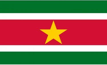 Suriname Flag Outdoor Nylon