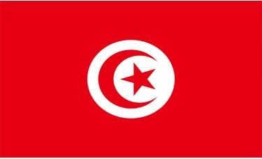 Tunisia Flag Outdoor Nylon