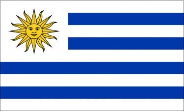 Uruguay Flag Outdoor Nylon