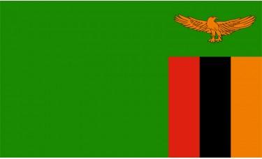 Zambia Flag Outdoor Nylon