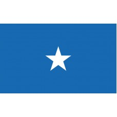 1 Star Air Force Brigadier General Outdoor Flag