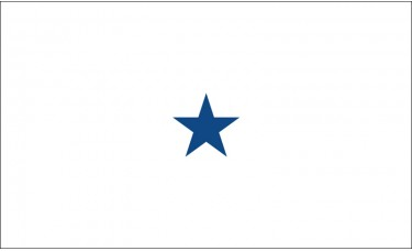 1 Star Non-Seagoing Navy Commodore Outdoor Flag